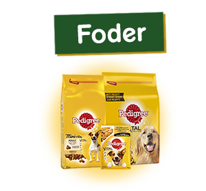 Pedigree® Feed